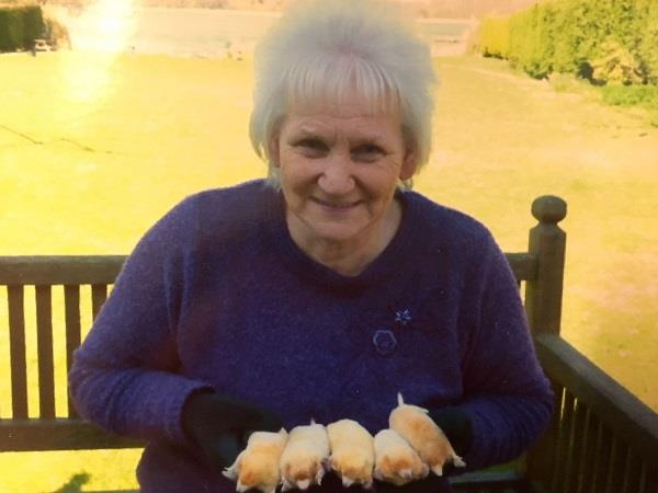 Rosemary And Leucistic Moles