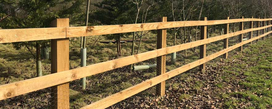 Wildlife Proof Fencing